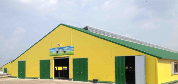 Молочно-товарная ферма на 1195 голов КРС в ЗАО ПОБЕДА